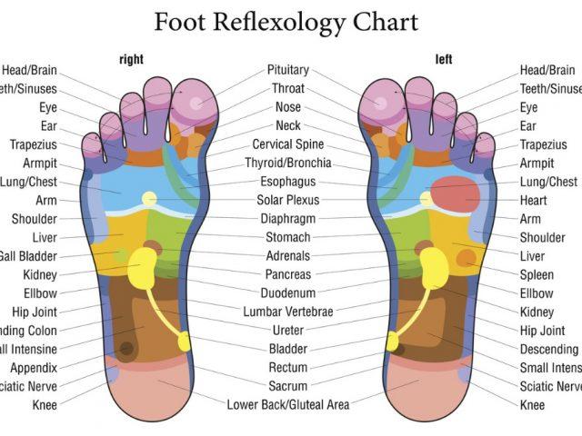 http://nimbusmassage.com/wp-content/uploads/2018/03/foot-reflexology-chart-description-vector-id494563867-640x480.jpg